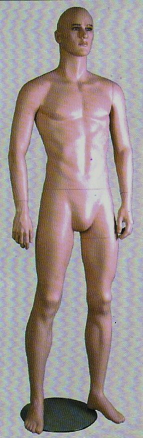 Mannequin Male Wz Head 1381